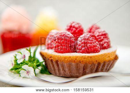 Raspberry tart dessert, Traditional french sweet pastry.