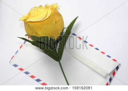 Yellow Colored Flowers sprig Above Colored Letter Red White and Blue Striped