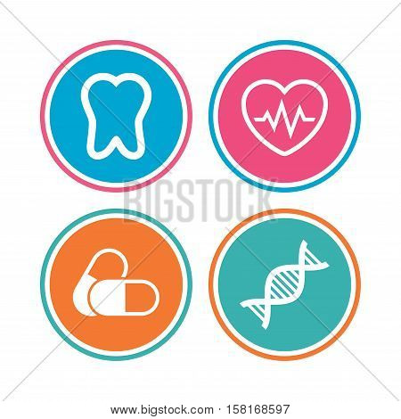 Maternity icons. Pills, tooth, DNA and heart cardiogram signs. Heartbeat symbol. Deoxyribonucleic acid. Dental care. Colored circle buttons. Vector