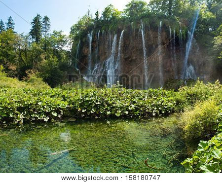 Galovacki buk waterfall in summer. A pond with transparent water among green plants and bushes. Plitvice lakes national park Croatia