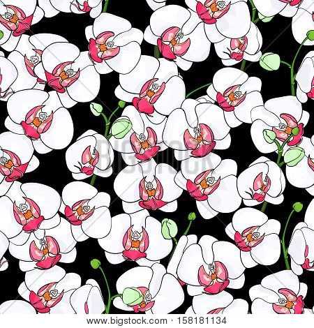 Seamless natural pattern of blooming white orchids with bright middle on a black background. Phalaenopsis. Hand drawn vector illustration.