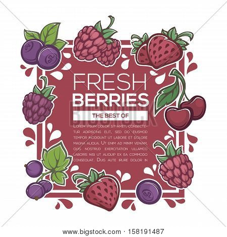fresh juicy berries background template for you menu