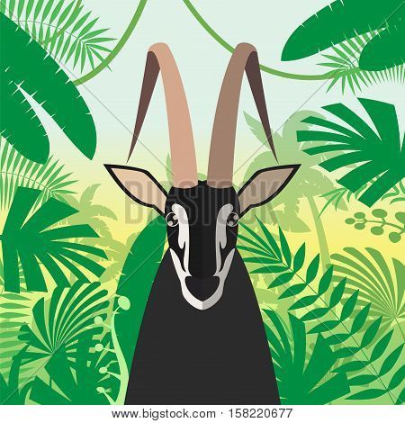Flat Vector image of the Black Buck on the Jungle Background