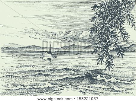Calm sea view etching, an olive tree on shore