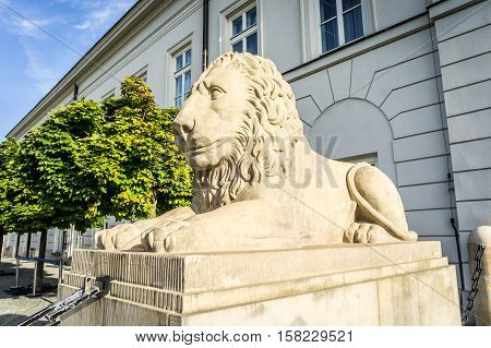 Statue of a stone lion lying in front of the Presidential Palace Krakowskie Przedmiescie in Warsaw Poland
