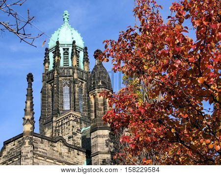 Toronto Canada - November 18 2016: Tree near tower of the Trinity College at University of Toronto.