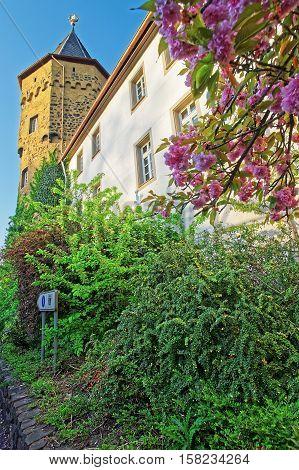 Castle In Linz Am Rhein Of Germany