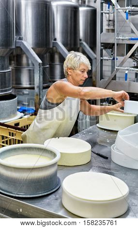 Cheesemaker Putting Young Comte Cheese In Forms In Dairy