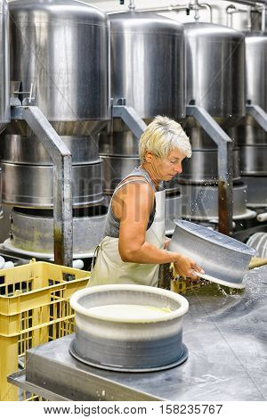 Cheesemaker Putting Young Comte Cheese Into Forms At Dairy