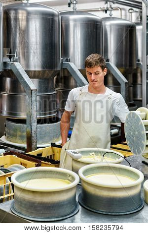 Cheesemaker Putting Young Gruyere Comte Cheese In Forms Dairy