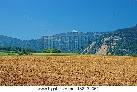Field In Yverdon At Jura Nord Vaudois Vaud Switzerland