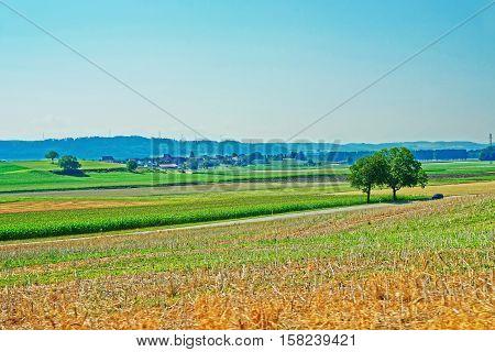 Fields At Yverdon In Jura Nord Vaudois Vaud Switzerland