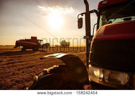 Combine Harvesting The Wheat