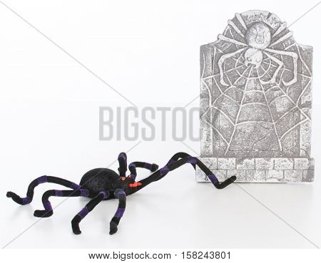spider and headstone isolated on white background
