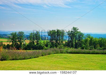 Lavender Field In Village In Yverdon Les Bains In Switzerland