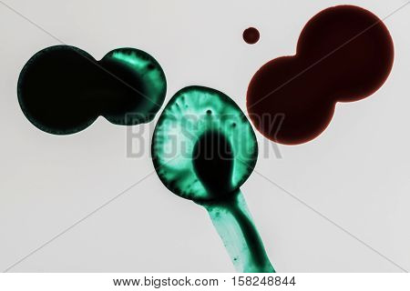red and green ink drops back light studio macro closeup