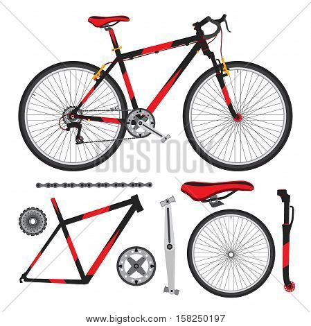 Bicycle, bike parts, accessories, details ecological vehicle in flat style