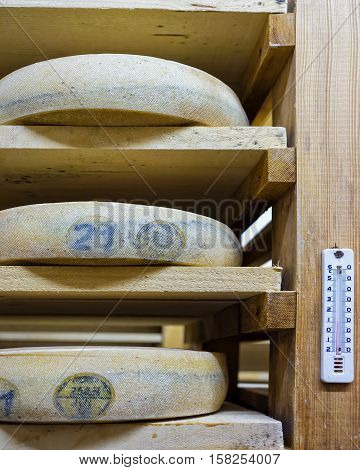 Shelves Of Aging Cheese In Maturing Cellar Franche Comte Creamery
