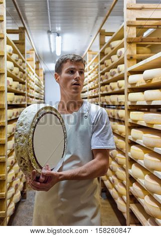 Worker Holding A Wheel Of Cheese In Franche Comte Creamery