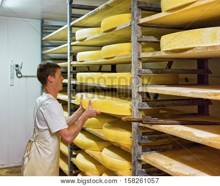 Worker In Ripening Cellar With Aging Comte Cheese Of Dairy