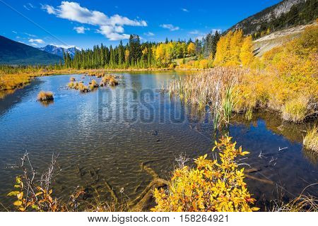 The superficial lake Vermilion among mountains and the woods. Indian summer in the Rocky Mountains of Canada
