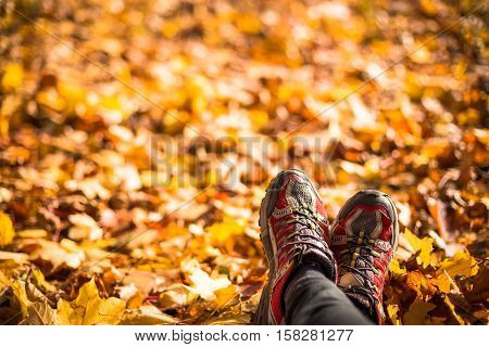 Legs with red sneackers are on autumn leaves. Sportman after runnig training.