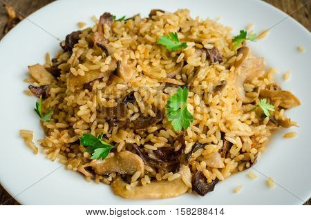 Homemade traditional Italian mushroom risotto on wooden table. Classic Risotto with mushrooms and vegetables served on a white plate. Wild mushrooms risotto with parsley.