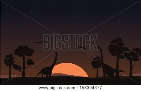 At sunset brachiosaurus landscape of silhouettes vector illustration