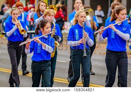Veterans Day Parade 2016