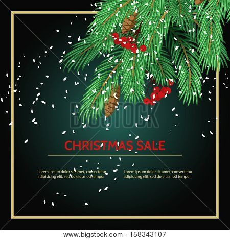 Big sale card background poster. Stock vector illustration with fir branches and sale label on black background.
