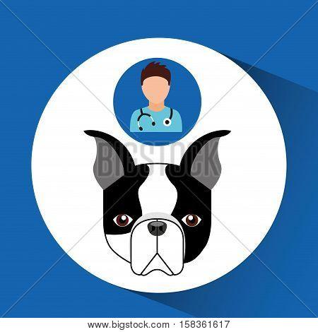 doctor cartoon veterinarian dog french bulldog vector illustration eps 10