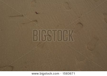 Footprints In Sand In Bolgaria1