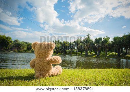 my teddy bear go on the lovely day alone