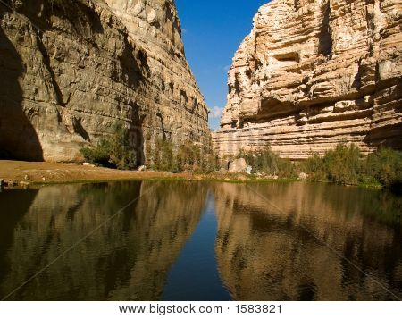 Canyon In The Spring