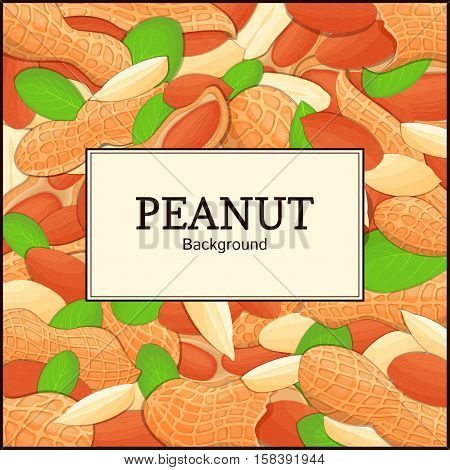 The rectangular frame on peanut background. Vector card illustration. Nuts frame, peanut fruit in the shell, whole, shelled, leaves, appetizing looking for packaging design of healthy food