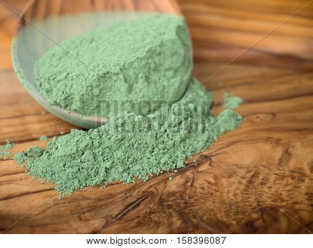 Indigo indigofera tinctoria powder in the wooden spoon