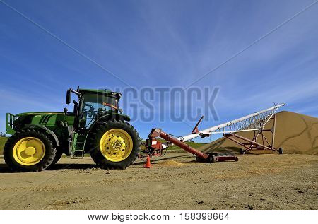 BATTLE LAKE, MINNESOTA, Oct 21, 2016:  The tractor operating a tube elevator is is a product of John Deere Co, a 675 R, an  American corporation that manufactures agricultural, construction, forestry machinery, diesel engines, and drivetrains.