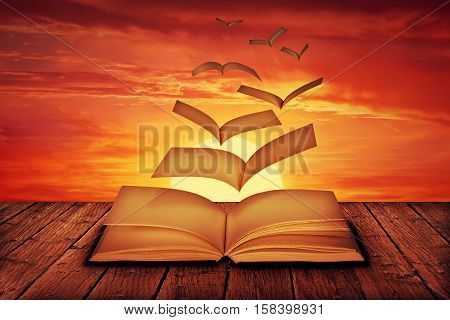 Unwritten white pages flying out of a book and transform into magic birds escape on a sunset background.