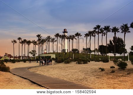 Palm trees lighted by evening sun against sky with clouds.embankment on sunset California USA. Long beach Los-Angeles. Long Beach California USA Harbor Lighthouse.