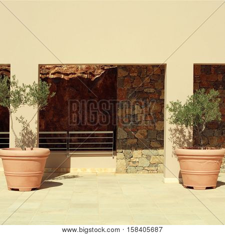 Two terracotta pots with olive trees on terrace of stone mediterranean house, Greece. Square toned image