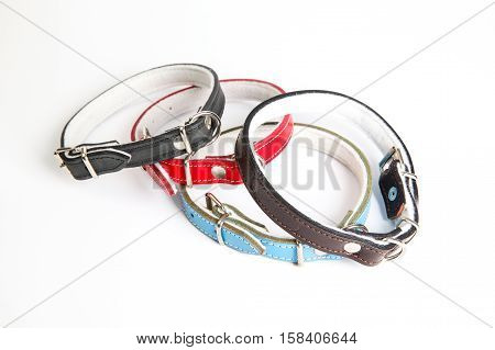 Leather black red blue brown dog collar on a white background
