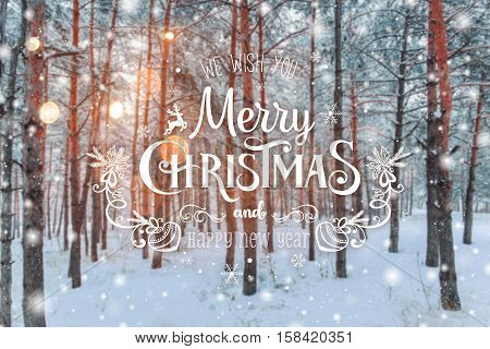 Frosty winter landscape in snowy forest. Xmas background with fir trees and blurred background of winter with text Merry Christmas and Happy New Year
