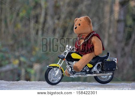 Teddy Bear sits on motorcycle in the nature