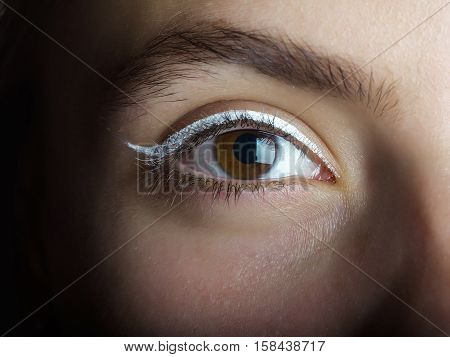 Cute female eye of brown color with white eyeliner makeup and bushy eyebrow on pretty girl face