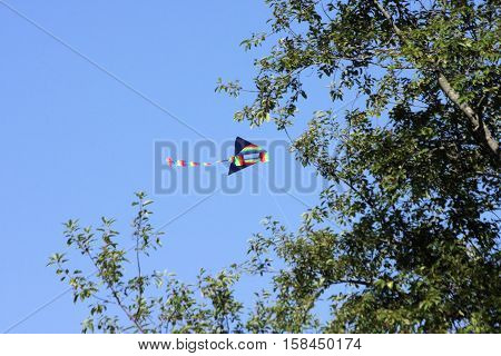 Multi colored kite hovering above the tree line on a sunny summer day.