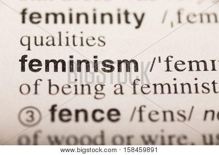 feminism - word in dictionary. macro shot. selective focus