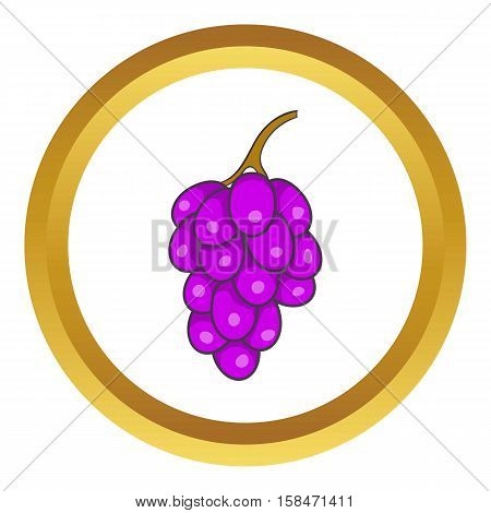 Bunch of wine grapes vector icon in golden circle, cartoon style isolated on white background