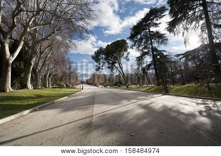 Pedestrian walkway at Retiro Park Madrid Spain