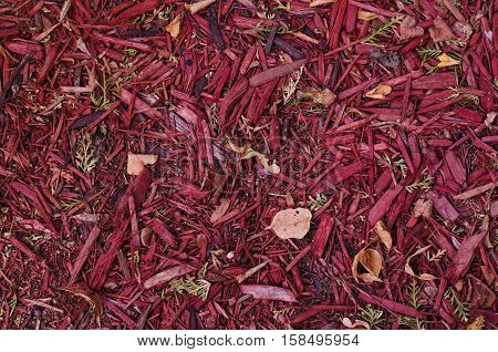 Closeup shot of red pink mulch used for garden decorating