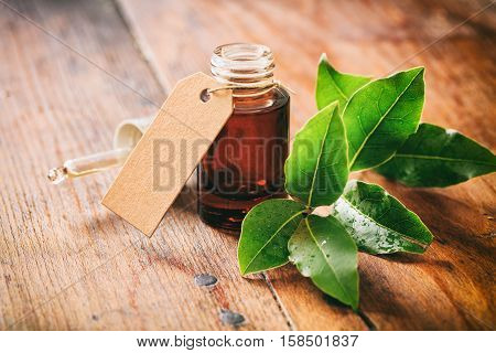 Fresh Bay Laurel And Oil On Wooden Background